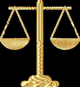 Судебная экспертиза после ДТП