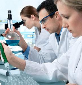 Лабораторные изыскания в вопросах экспертизы